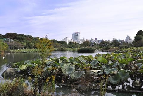 上野動物園045.jpg